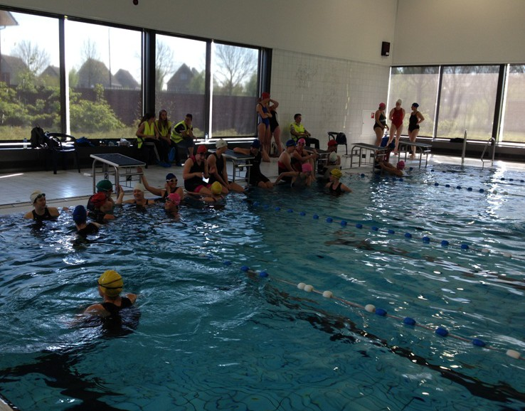 Foto zwemloop Het Lint