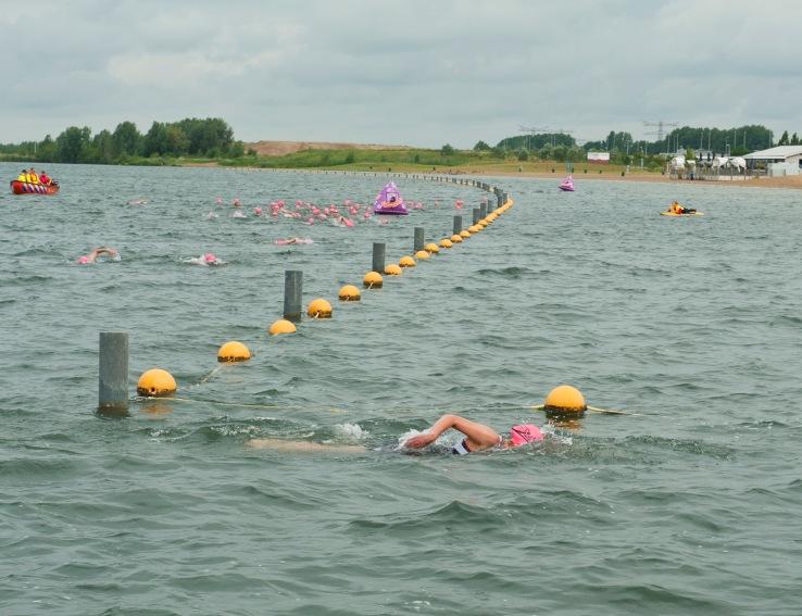 Zwemsters met roze badmutsen langs boeienlijn Haarrijnse Plas