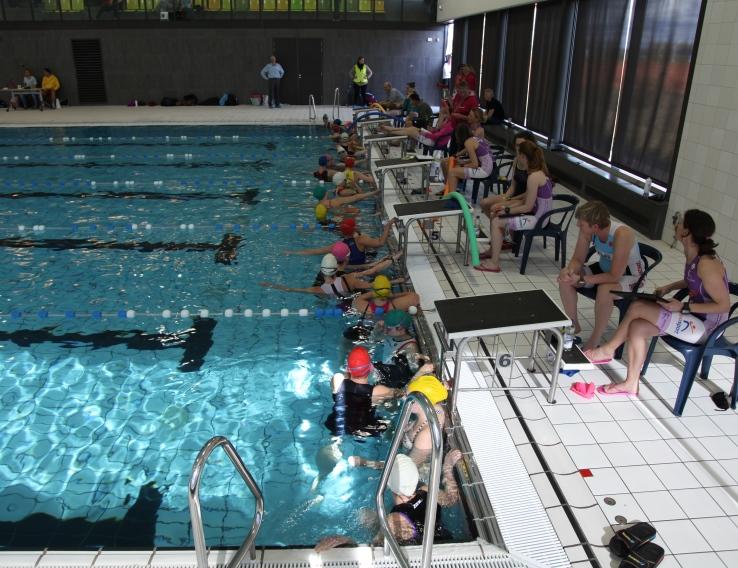 Zwemloop 2015