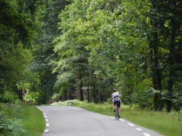 Nienke op de fiets op de col du Donon